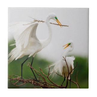 Great Egret (Ardea Alba) Breeding Activity Small Square Tile