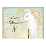 Great Egret Coastal Beach - Table Number Postcard