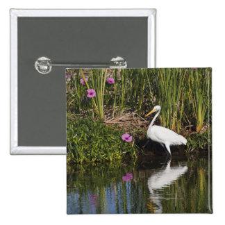 Great Egret hunting fish in freshwater marsh 15 Cm Square Badge