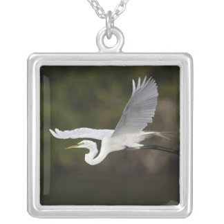 Great Egret in flight, Casmerodius albus, Silver Plated Necklace
