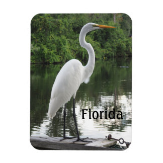 great egret rectangular photo magnet