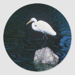 Great Egret Round Stickers