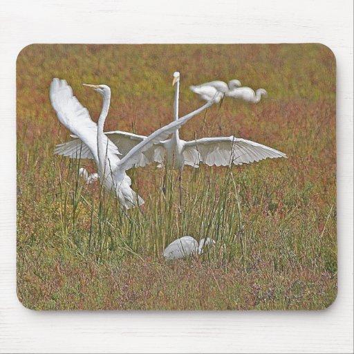 Great Egrets Mousepad
