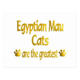 Great Egyptian Mau Postcard