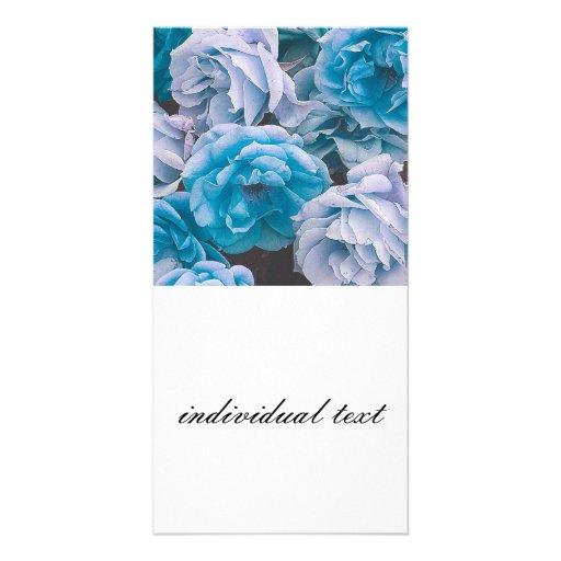 Great Garden roses,blue Photo Card