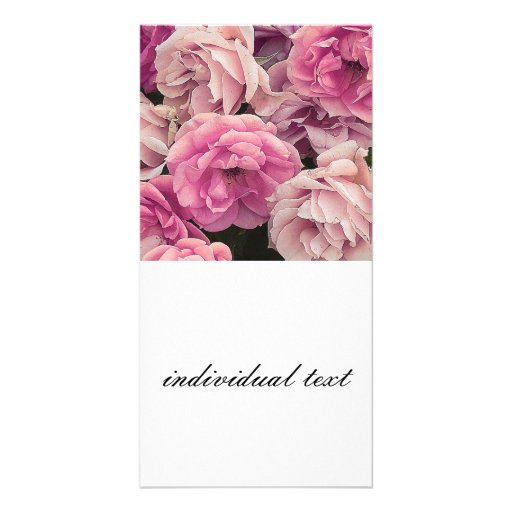 great garden roses pink customized photo card
