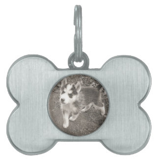 Great gift idea - Personalized Bone Dog Tag by DAL Pet Name Tags