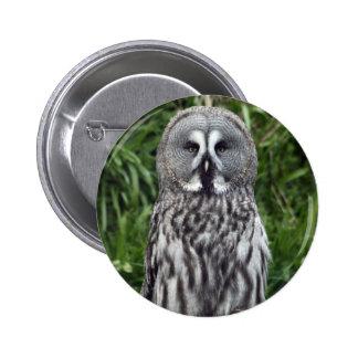 Great Grey Owl 6 Cm Round Badge