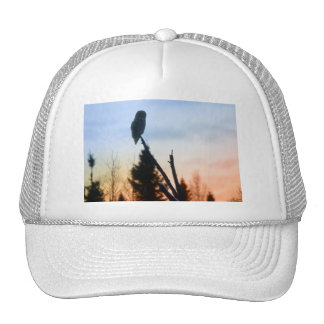 Great Grey Owl at Sunset Mesh Hat