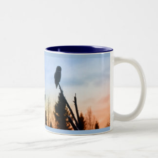 Great Grey Owl at Sunset Coffee Mugs