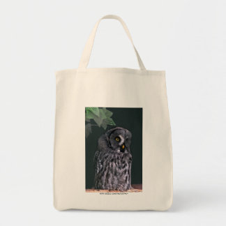 Great Grey Owl Canvas Bags