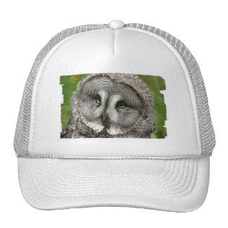 Great Grey Owl Baseball Hat