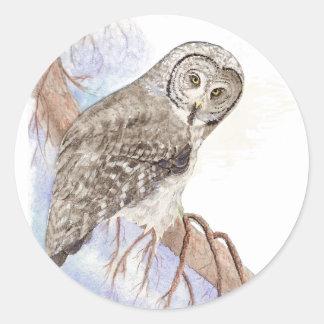 Great Grey Owl, Bird, Nature, Wildlife,  Sticker