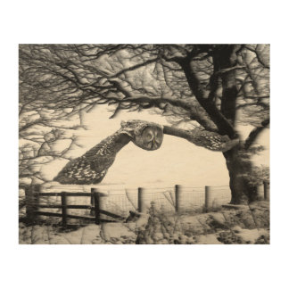 Great grey owl birds of prey snow wood art picture wood print
