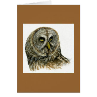 """""""Great Grey Owl"""" Greeting Cards"""