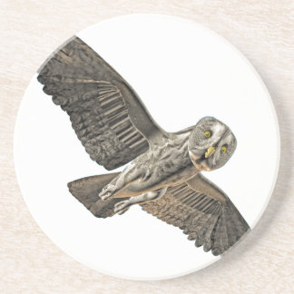 Great Grey Owl Coasters