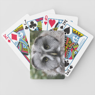 Great Grey Owl Deck Of Cards