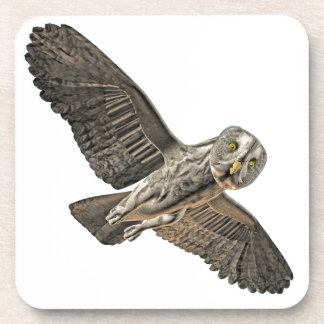 Great Grey Owl Drink Coasters