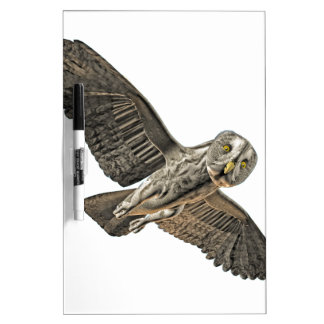 Great Grey Owl Dry Erase Whiteboard