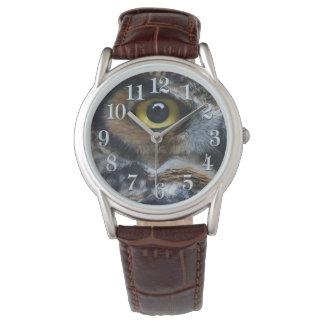 Great Grey Owl Eye Wildlife Raptor Photo Watch