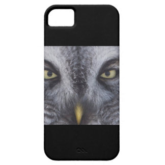 great grey owl face iPhone 5 cases