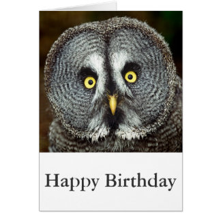 Great Grey Owl - Happy Birthday Card