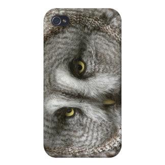 Great Grey Owl iPhone 4 Case