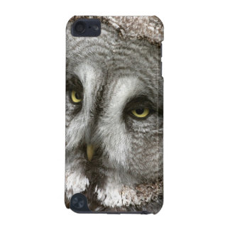 Great Grey Owl iTouch Case iPod Touch 5G Covers