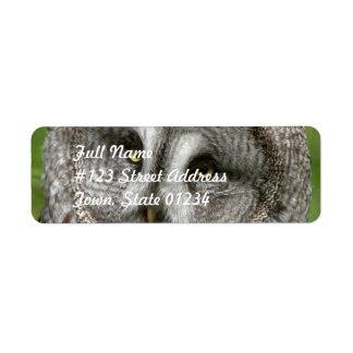 Great Grey Owl Mailing Label Return Address Label