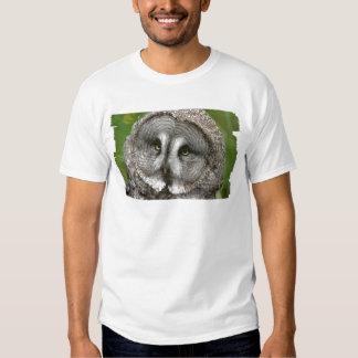 Great Grey Owl Men's Necktie T-shirts
