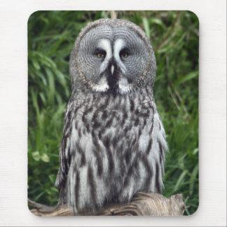Great Grey Owl Mouse Mat