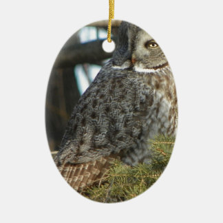 Great Grey Owl Photo Gift Ceramic Oval Decoration