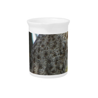 Great Grey Owl Photo Gift Drink Pitchers