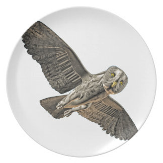 Great Grey Owl Party Plate