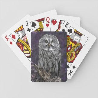 Great grey owl poker deck