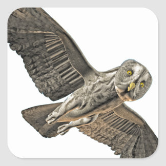 Great Grey Owl Square Sticker