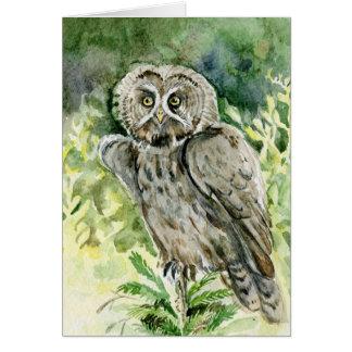 Great Grey Owl watercolor Greeting Card