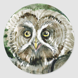 Great Grey Owl watercolor large head Round Sticker