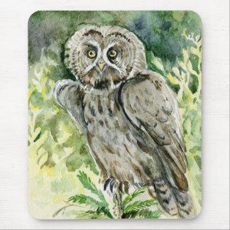 Great Grey Owl watercolor Mousepads