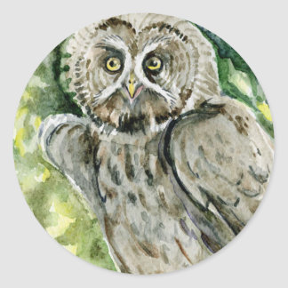 Great Grey Owl watercolor Round Sticker