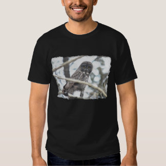 Great Grey Owl with Mouse Wildlife Art Tshirts