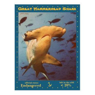 Great Hammerhead Shark is endangered, a Postcard