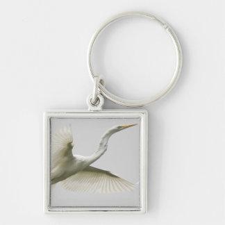 Great Heron Keychain