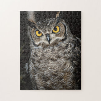 Great Horned Owl  2 Jigsaw Puzzle