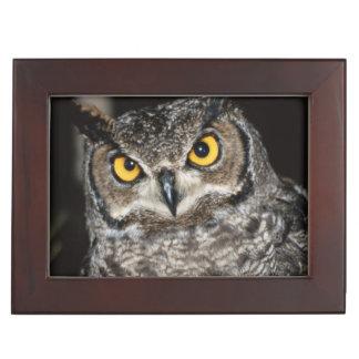 Great Horned Owl  2 Keepsake Box