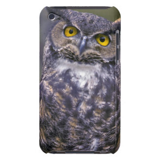 Great Horned Owl Barely There iPod Cases