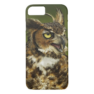 Great Horned Owl, Bubo virginianus, Captive 2 iPhone 8/7 Case