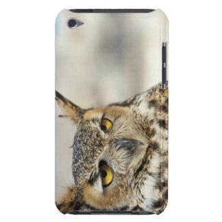 Great Horned Owl (Bubo virginianus), captive Case-Mate iPod Touch Case