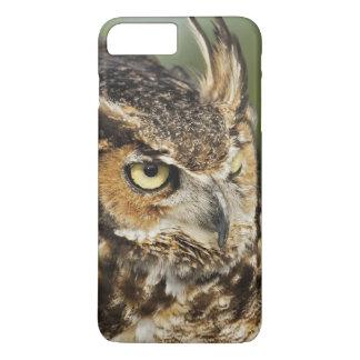 Great Horned Owl, Bubo virginianus, Captive iPhone 8 Plus/7 Plus Case
