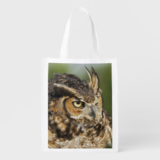 Great Horned Owl, Bubo virginianus, Captive Reusable Grocery Bag